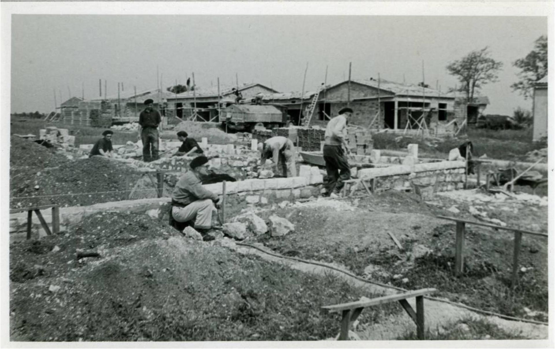 Castors En Construction (coll Mediatheque Saintes)
